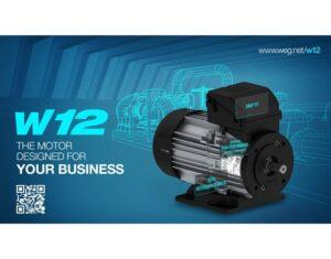 Silnik elektryczny W12 WEG