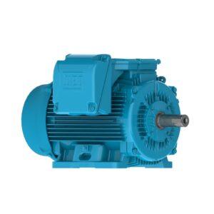 Silniki nieiskrzące serii W22XnCD